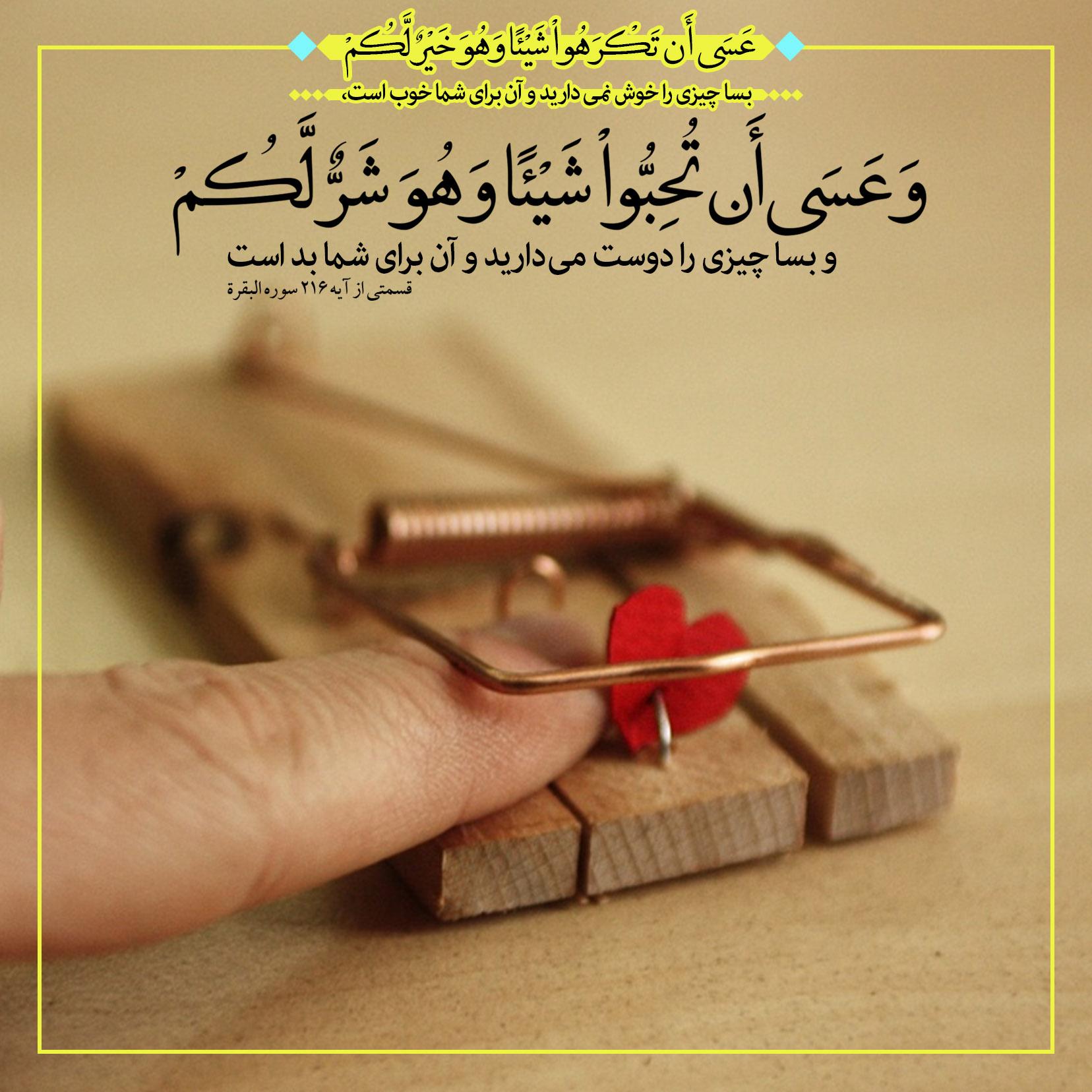 Image result for آیه گرافی دوستی